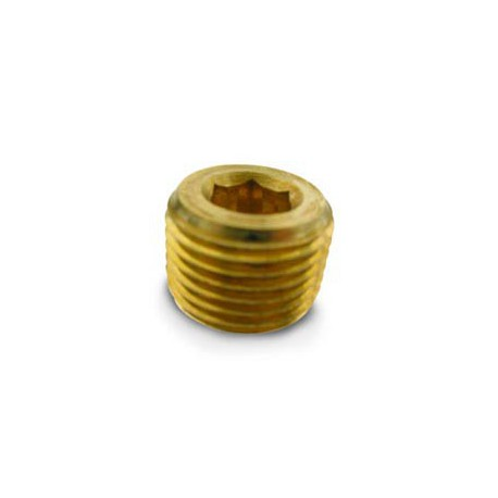 "Pipe Plugs- 1/2"" NPT (countersunk)"